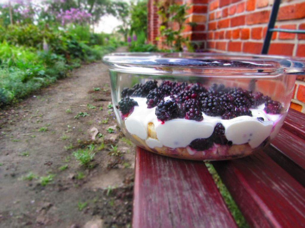 Brombeer-Joghurt-Dessert